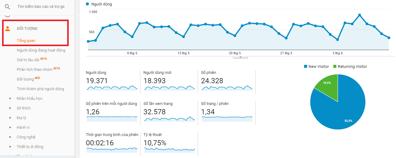 Các số liệu tổng quan về đối tượng trên Google Analytics.